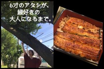 6才のアタシが当時登った桜の木と多摩平のうなぎ藤田