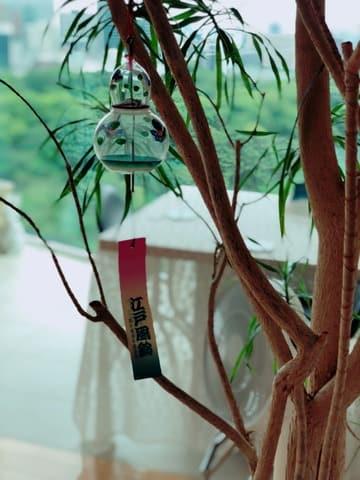 三浦理恵子さんの自宅のリビングに飾られた江戸風鈴