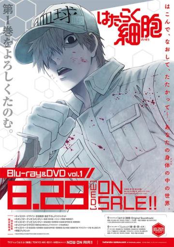 ▲BD&DVD第1巻パッケージポスター