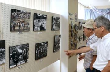 地域住民と牛との関わりを写した作品が並ぶ「牛の角突き」写真展=小千谷市本町1