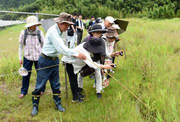 ハッチョウトンボを探し、観察する参加者たち