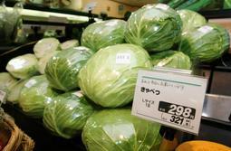 猛暑の影響で高騰するキャベツなどの葉物野菜=神戸市内のスーパー