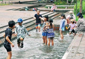 夏の暑い日(芹ヶ谷公園で撮影)
