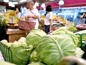 スーパーの野菜売り場=8月3日午後、東京都練馬区