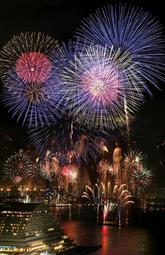 神戸の夜空を染める大輪の花火=4日夜、神戸市中央区海岸通6(撮影・大森 武)