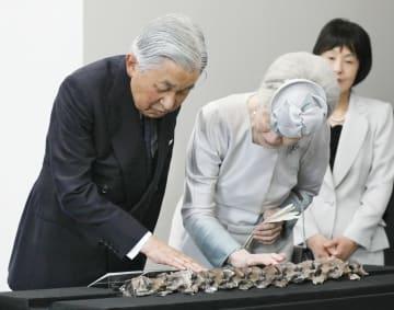 北海道むかわ町で発見されたハドロサウルス科恐竜の化石の一部を観賞される天皇、皇后両陛下=5日午前、札幌市豊平区(代表撮影)