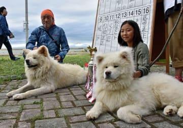 大賞に選ばれた白鳳と飼い主の藤井唯華さん(右)。左はわさおと飼い主の菊谷忠光さん