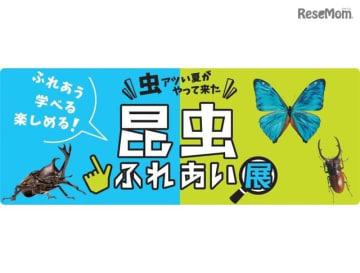 小田急百貨店新宿店 2018年「昆虫ふれあい展」