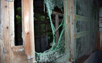 クマが壊した島脇さんの鶏舎。金網が破られ、羽根が散乱していた