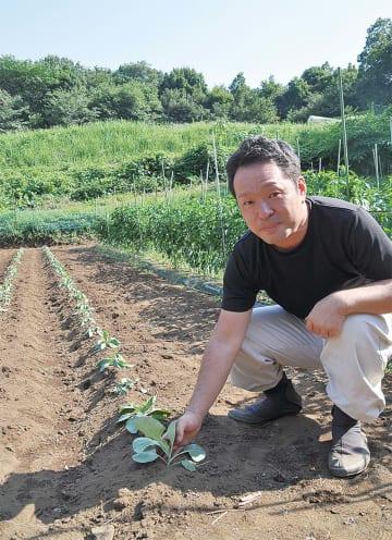 猛暑キャベツの苗を披露する広瀬昌則副部会長
