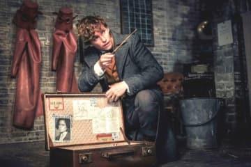 『ファンタスティック・ビーストと黒い魔法使いの誕生』より - (C) 2017 Warner Bros. Ent. All Rights Reserved. Harry Potter and Fantastic Beasts Publishing Rights (C) JKR.