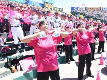 熱い声援で選手のプレーを後押しした大垣日大スタンドの生徒ら=兵庫県西宮市、甲子園球場
