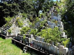 開園から64年。老朽化が進み、植物が生い茂る無縁塔=姫路市名古山町、名古山霊苑