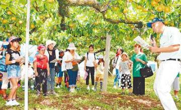 親子で「エコ農業」学ぶ 産地巡るバスツアー呉羽梨農園など見学