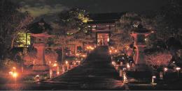 灯籠の光が夜の参道を幻想的に彩った