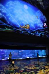 大輪のヒマワリや海の動物たちが現れる「光の切り絵」=須磨海浜水族園