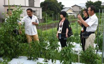 就農支援セミナーで、杉田准教授(左)からピーマンの品種や農業について学ぶ参加者ら