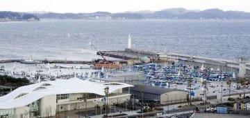 ヨットハウス(左手前)周辺の陸上に保管されている小型ヨット=藤沢市江の島