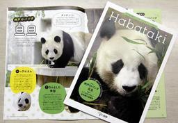 ジャイアントパンダ「旦旦」が表紙を飾った神戸市立王子動物園の広報冊子