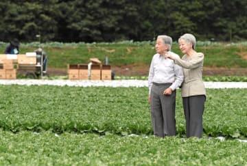 大日向開拓地の野菜畑を散策される天皇、皇后両陛下=23日午前、長野県軽井沢町(代表撮影)