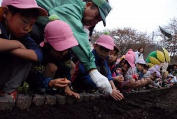 「座間で育って」 園児らが球根植え付け