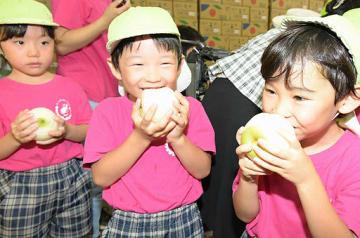プレゼントされた初物の二十世紀梨にかぶりつく園児たち=23日、大阪市福島区の市中央卸売市場
