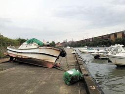 岸壁に乗り上げた船舶=24日午前5時45分ごろ、加古川市金沢町(読者提供)