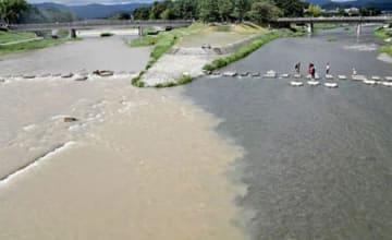 濁流となった鴨川(左)と透き通った流れの高野川(右)の合流点=24日午後1時30分、京都市左京区・加茂大橋より北を望む
