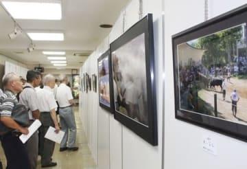 東京新潟県人会館で始まった作品展=25日、東京