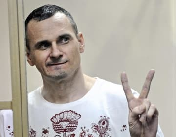 ロシア南部ロストフナドヌーの法廷で判決を言い渡された際のオレク・センツォフ氏=2015年8月(AP=共同)