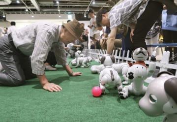 会場内のドッグランでアイボを遊ばせる参加者=26日、東京都中央区