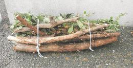 家庭で切られた庭木の枝や幹(仙台市環境局提供)