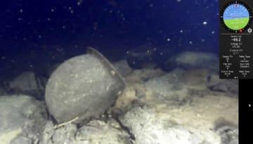 水深約70メートルの湖底で見つかったつぼの映像。周囲の岩盤には土砂が堆積していなかった=びわ湖トラスト提供
