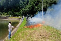 ため池の堤で行われた野焼き=7月、三田市内(読者提供)