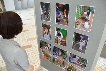会場には昆虫と触れ合う子どもたちを撮影した写真が並ぶ=1日、境港市の夢みなとタワー