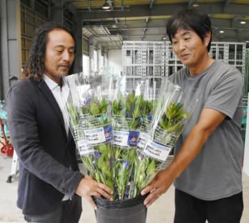 10日間の「品質保証カード」を付けたリンドウを手に新商品への期待を込める立花賢生部会長(右)と金岡信康社長