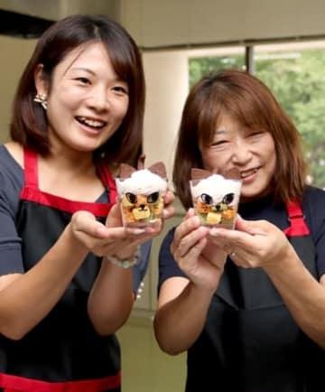 「妙高あらいうまいもんまつり」に出品するスイーツ「にゃんだフルケーキ」=8月30日、妙高市