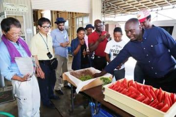 農業生産法人「戸頭農場」の設備を視察するJICAの外国人研修員ら=新潟市南区