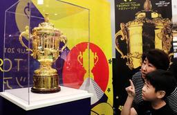 ラグビーワールドカップの優勝杯「ウェブ・エリス・カップ」を見学する親子=神戸市兵庫区中之島2