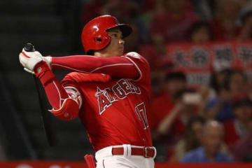 今季19度目のマルチ安打を記録したエンゼルス・大谷翔平【写真:Getty Images】
