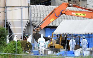 豚コレラウイルスを検出し、防疫作業が進められた養豚場=11日、岐阜市