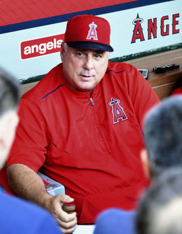 Angels manager Scioscia