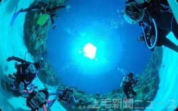 まるで海の中にいるような感覚を楽しめる映像