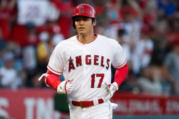 20号本塁打を放ったエンゼルス・大谷翔平【写真:AP】