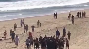 Man from Revere dies in shark attack in Cape Cod