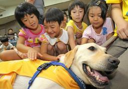 PR犬とふれあい、笑顔を見せる子どもたち=サンパル日野