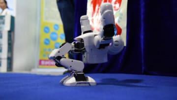 蘭州科学技術成果博覧会、興味深い展示品