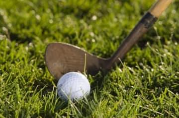 国会議員の中には、ゴルフ禁止を改めるよう求める声も多いようですが……