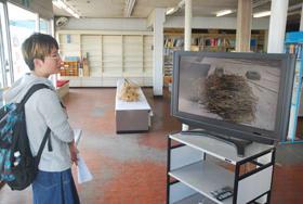 白老で収録したネマガリダケに関する映像などが放映されている展覧会