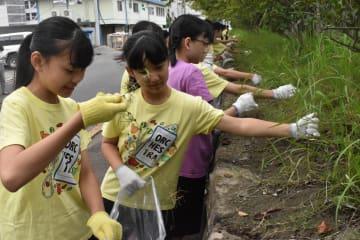 草抜きをする徳島中の生徒=徳島市の徳島中央公園